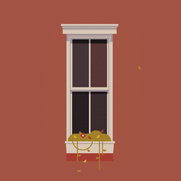 lovely illustrations show the different types of windows On window illustration