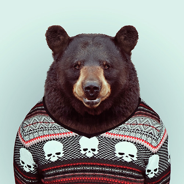 Animals wearing clothes - photo#22