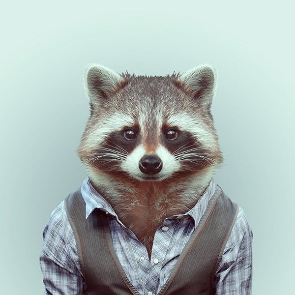 Animals wearing clothes - photo#1